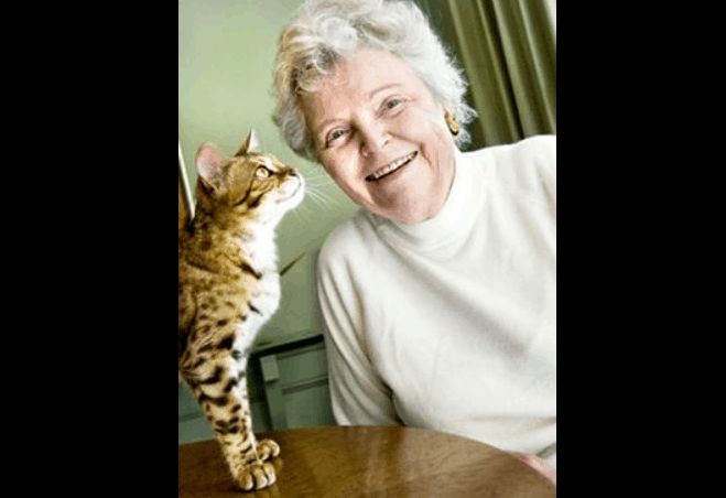 Jean Mill Bengal Cat